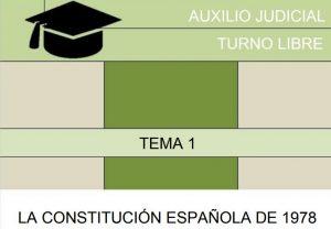 auxilio judicial curso online